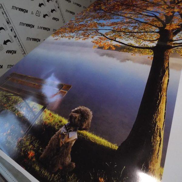 Fototapety na ścianę tapety drukowane samoprzylepne